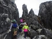気仙沼の地域体験イベント「ちょいのぞき」 4月から毎週末開催