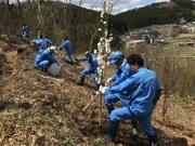 南三陸「花見山」で植樹会 花の絶えない景観づくりに一役