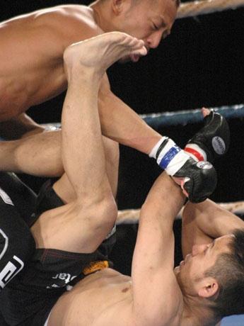 札幌で総合格闘技「修斗」公式大会-出場選手に地元選手も多数