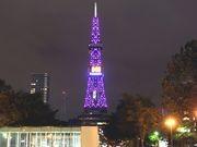 さっぽろテレビ塔、ピンク色にライトアップ-ピンクリボン活動の一環で