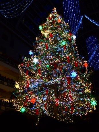 点灯したジャンボクリスマスツリー