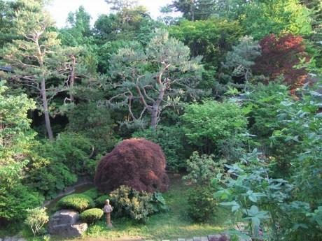 敷地内の日本庭園