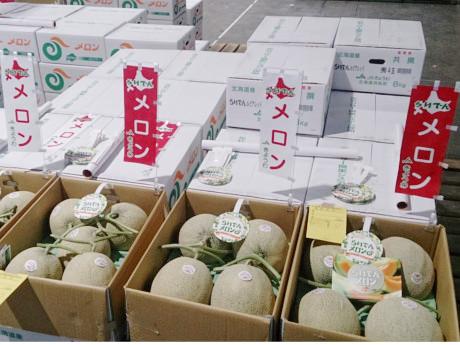札幌市中央卸売市場に並ぶ「らいでんメロン」
