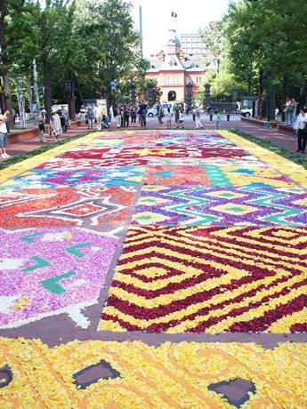 色とりどりのバラの花びらで描かれたフラワーカーペット