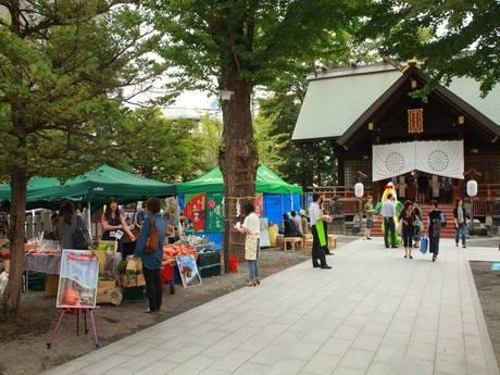 北海道神宮頓宮で「茶葉」の魅力発信イベント 「世界のお茶」一堂に
