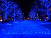 札幌市北3条市場「アカプラ」でイルミネーションイベント「青の洞窟」