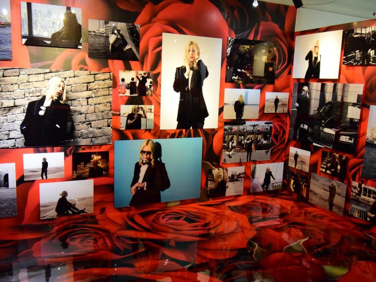 ローランドさん写真で埋め尽くされる「ローランド写真館」