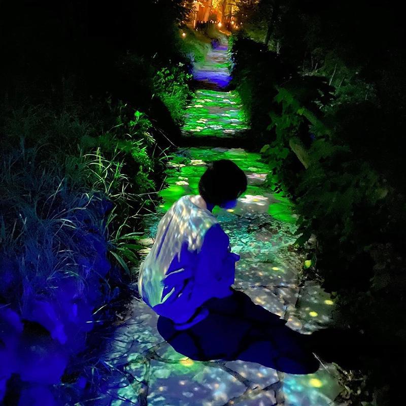 幻想的な光と自然の融合