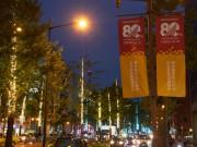御堂筋で完成80周年記念イルミネーション 11月まで毎週金曜に点灯