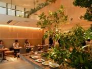 大阪・靱公園近くに中国料理店「熱香森」 「植物園のような空間」演出