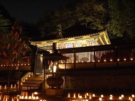 「瑞鳳殿七夕ナイト」の様子。1,200本の竹灯籠で幻想的に映し出される瑞鳳殿本殿