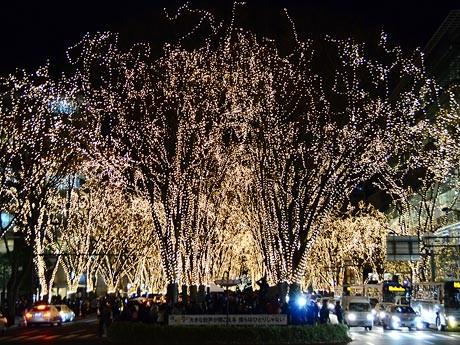 7日に開幕した「SENDAI光のページェント」。予定時刻通り17時30分、60万個のLEDが一斉に点灯した