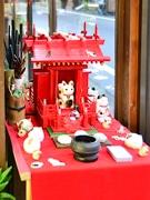仙台・上杉で2回目の「ねこまつり」-「猫ロード」プロジェクト周知目指す