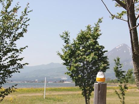 猪苗代湖畔で初開催される「オハラ☆ブレイク '15夏」。キャンプサイトも設け、毎週末2泊3日までキャンプもできる