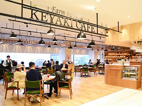 ケヤキカフェ店内。青葉通りを見下ろす大きな窓を設け、開放的で明るいくつろぎの空間を演出する
