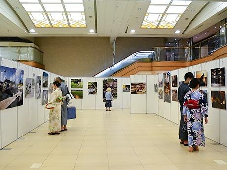 仙台三越の「岩合光昭の世界ネコ歩き写真展」会場の様子。仙台七夕まつり見物の途中で立ち寄る人も