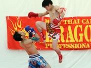 仙台・市民広場で「タイフェス」 日タイ修好130周年、さらなる友好を