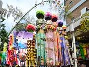 杜の都の夏を彩る「仙台七夕まつり」開幕 初日は77万人の人出でにぎわう
