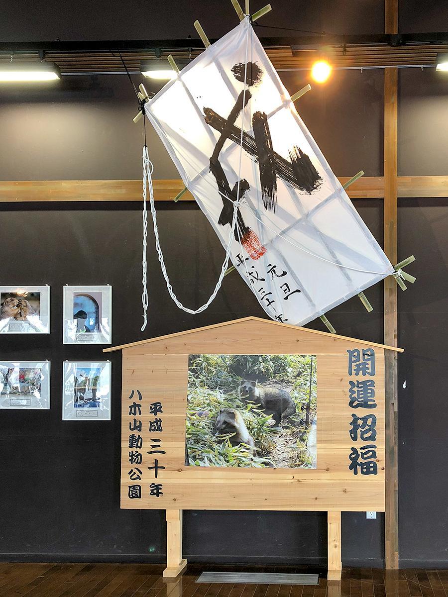 ビジターセンター展示室に設置されたタヌキの巨大絵馬