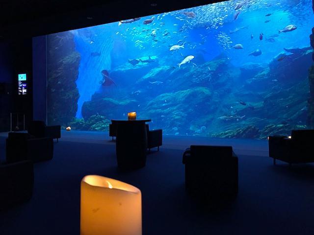 夜の水族館の様子。アロマとキャンドルライトで演出した大水槽前