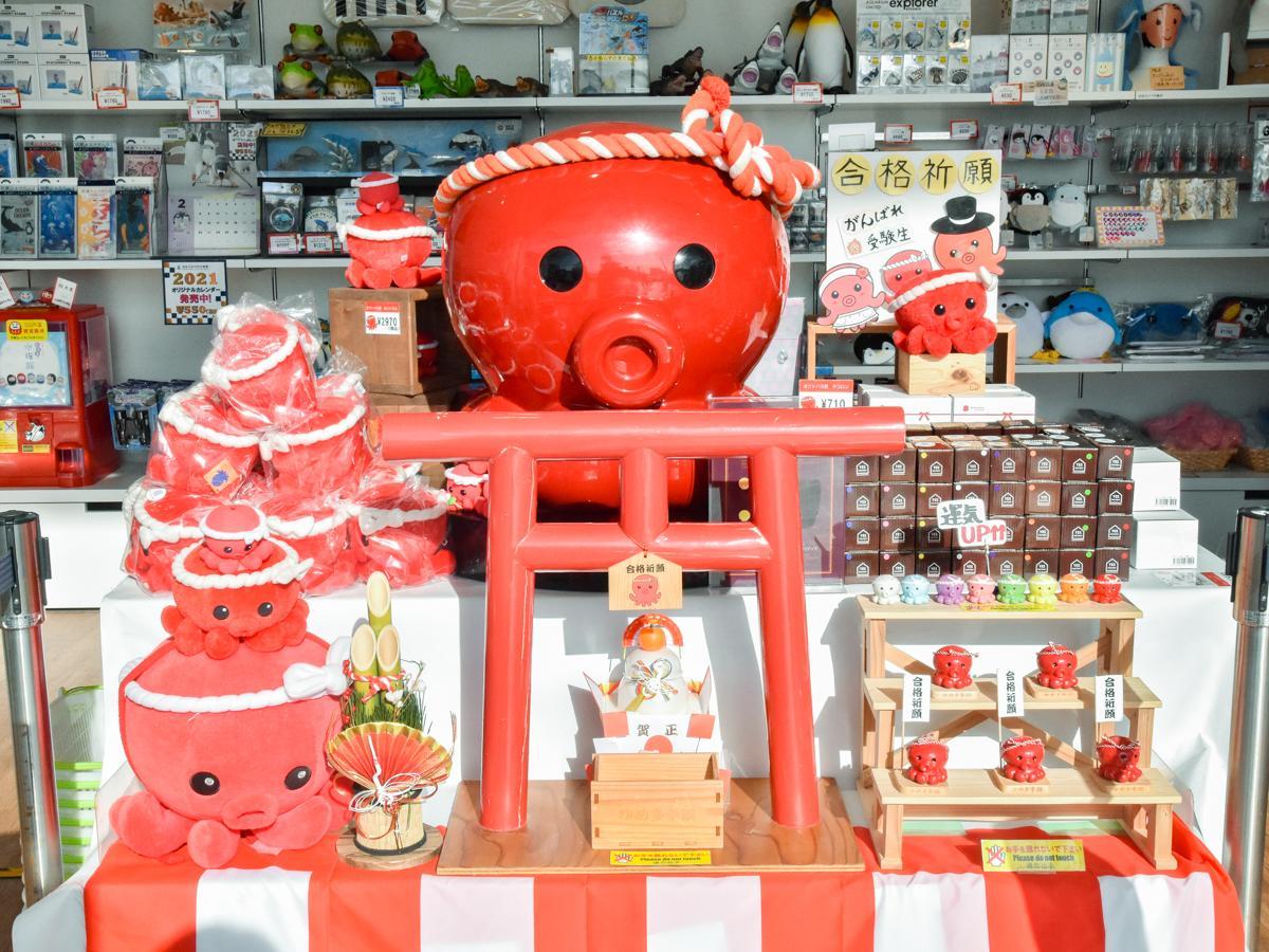 2階軽飲食店・グッズ売店「cabana」に開設された「オクトパス君」ポップアップショップ