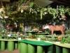 仙台で「大アマゾン展」 流域に生息する多種多様な生物の剥製・標本300点