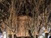仙台の冬の風物詩「光のページェント」開幕 「みんなで灯す、心の明かり」テーマに