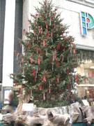 渋谷パルコに高さ8メートルの大型クリスマスツリー出現