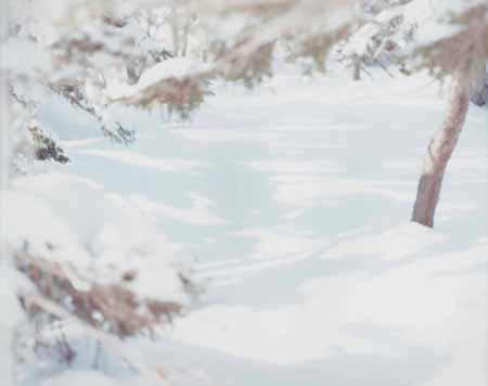 写美で鈴木理策さんの個展「熊野、雪、桜」-初公開作品も - シブヤ ...