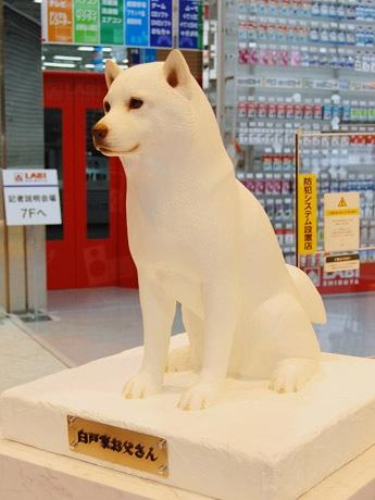 ヤマダ電機が明日オープンする「LABI渋谷」店頭に、ハチ公像ならぬ「ソフトバンクお父さん犬」像が登場。ネームプレートには「白戸家のお父さん」