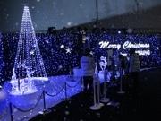 渋谷に「人工雪」が降る特設イルミ空間-サムスン新携帯プロモで
