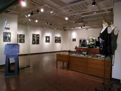 「ロゴスギャラリー」展示風景。作品ではホッキョクグマなどの骨格標本をスタイリッシュに写し出した