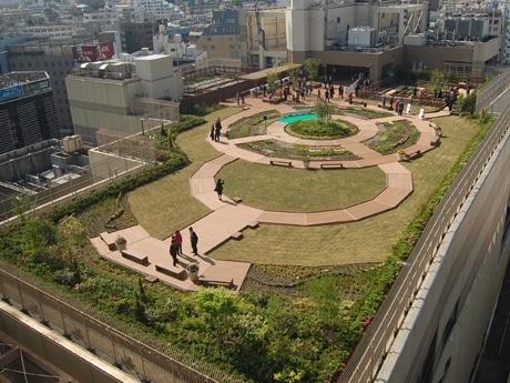 総面積約2,100平方メートルの広さを誇る屋上庭園。庭園内にはハーブなどを育てられる貸し菜園も