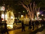 表参道イルミネーション、11年ぶりに復活へ-63万個の電飾でライトアップ