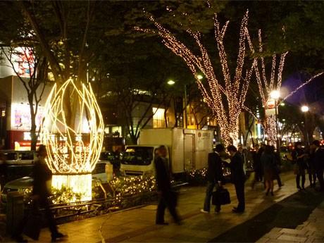 10月20日に開催した表参道ケヤキ並木での点灯実験の様子