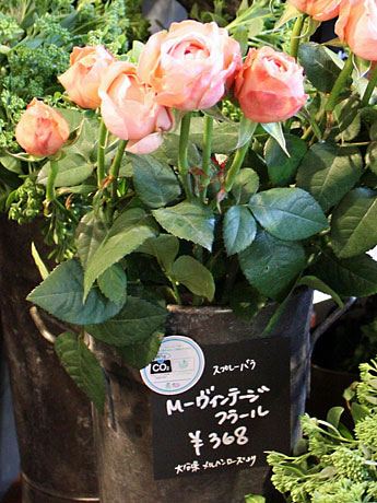 販売什器に「カーボンフットプリント」を表示して販売するバラ