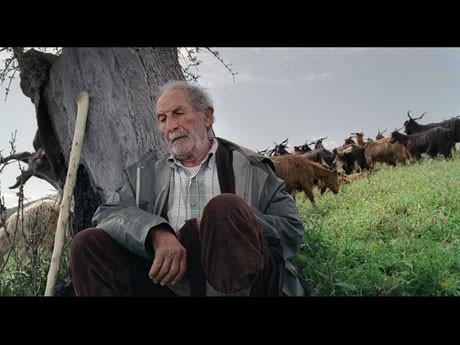 セリフがなく、生活音だけで展開するも特徴的な「四つのいのち」より© Vivo film,Essential Filmproduktion,Invisibile Film,ventura film.