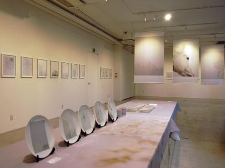 作品約30点を展示するほか、絵皿やテーブルクロスなどに展開したアイテムも販売する場内