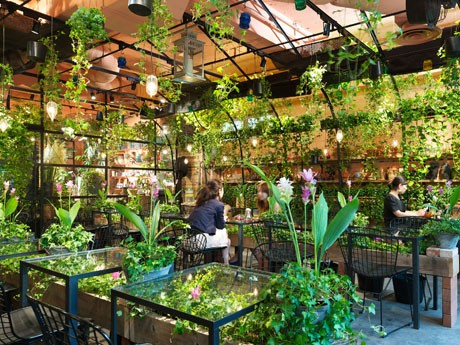 カフェを囲む半円形のフレーム全体やガラステーブルの下などに緑を配している