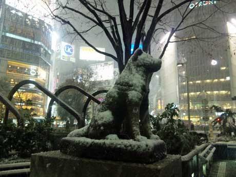 この冬初めて雪化粧したハチ公像