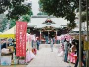 渋谷・金王八幡宮で「桜まつり」-年に一度の「金王丸尊像」ご開帳も