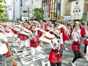 渋谷で鹿児島発「おはら祭」開催迫る-2300人が踊りパレード