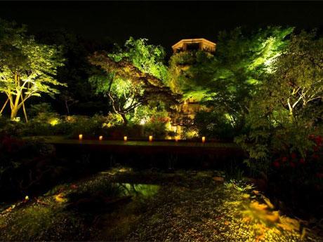 夜のウェスティンガーデン