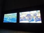 「恵比寿映像祭」開幕 26カ国・地域の73組出品、虫の足音や香りの展示も