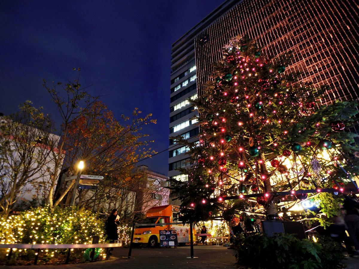 広場の植木や高さ7メートルのツリーなどにLED電球を装飾している