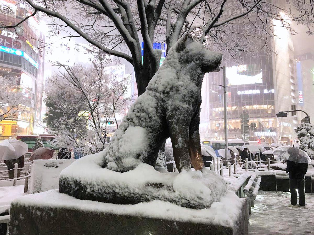 雪化粧した渋谷駅前のハチ公像