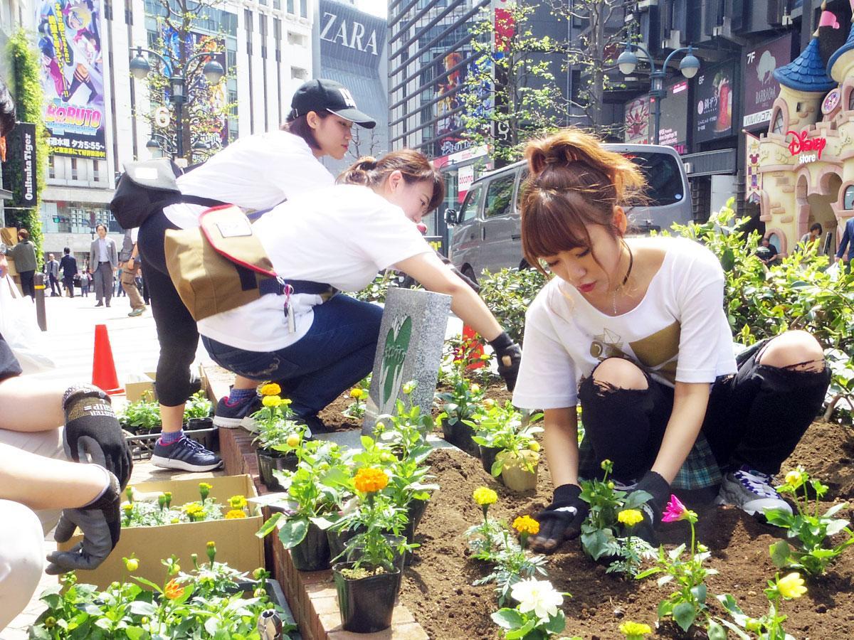 公園通りで花を植える作業をした高橋みなみさん(右)