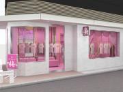 ピンク色を基調にした店舗(画像=外観イメージ)で成人玩具などを扱う