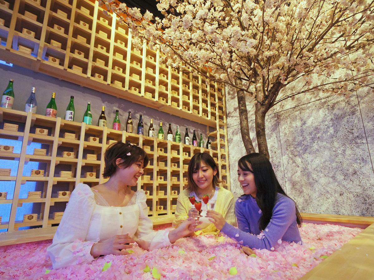 造花の花びら120万枚の「桜のプール」の中で佐賀の新酒を楽しめる
