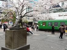 外出自粛 渋谷センター街なども人出まばらに、商業施設も臨時休館